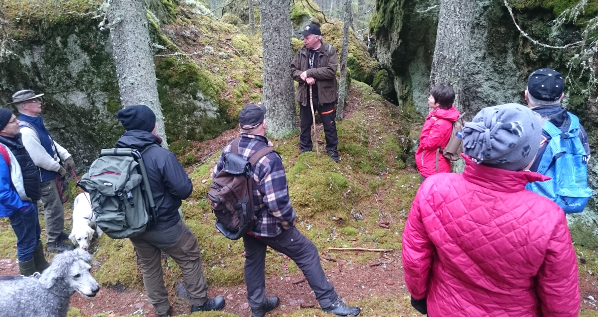 Åke guidar i en blockrik del av reservatet.